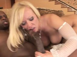 wild COUGAR loves getting it tough