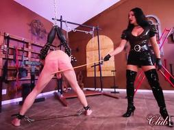Domina Michelle has lots of Pony-Power/Caned as an Instance